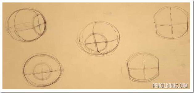 drawing head shapes flattening sides of sphere