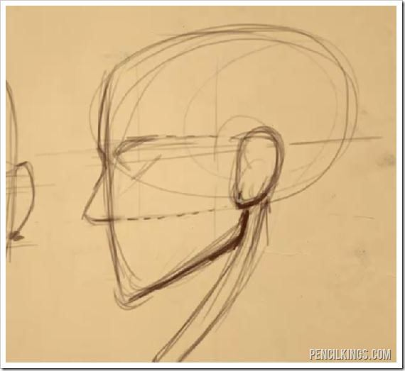 face drawing proportions guidelines