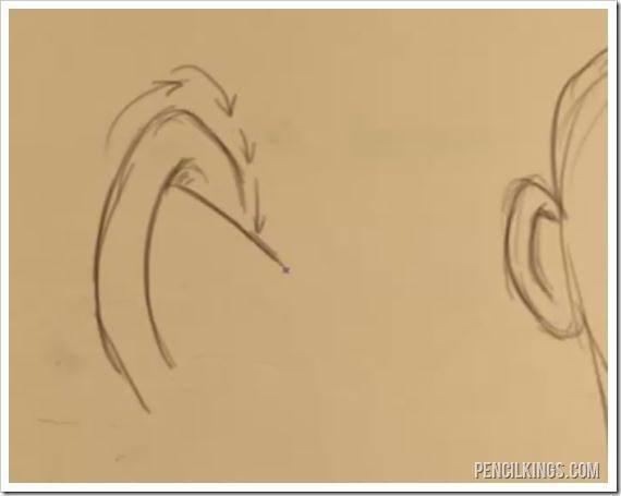 drawing an ear from the back line drawing
