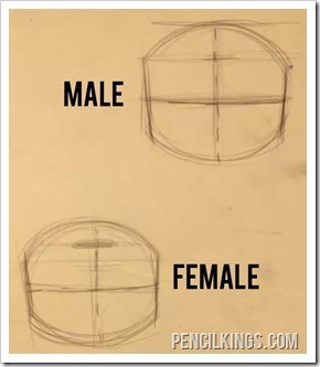 drawing faces male and female head proportions