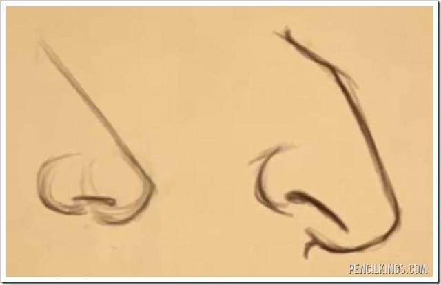 nose drawing nose shapes