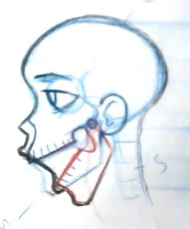 drawing skin over an open mouth skull