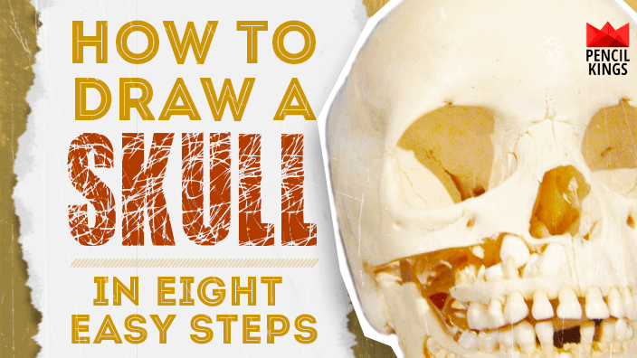 How to Draw a Skull in 8 Simple Steps for Beginner Artists 2 how to draw a skull featured image