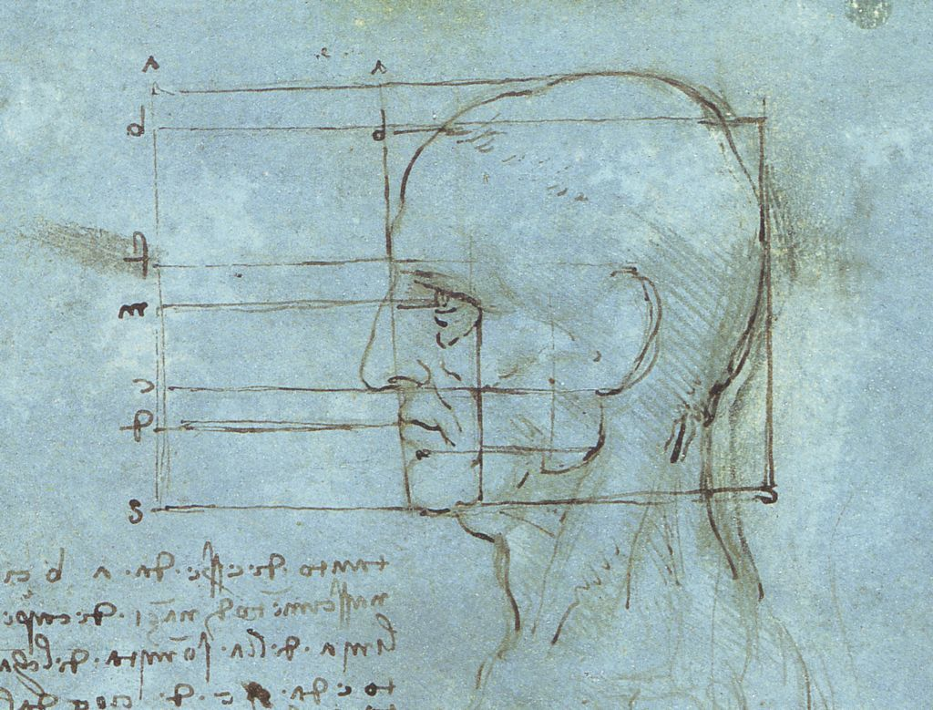 Drawing Face Proportions Made Easy in 5 Steps With Advice From Professional Artists 2 Proportions of the Head