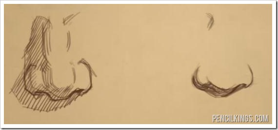 nose drawing tutorial male and female noses comparison