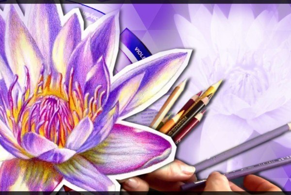 colored pencil techniques lilies header
