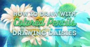 how-to-draw-with-colored-pencils-drawing-daisies-featured-image