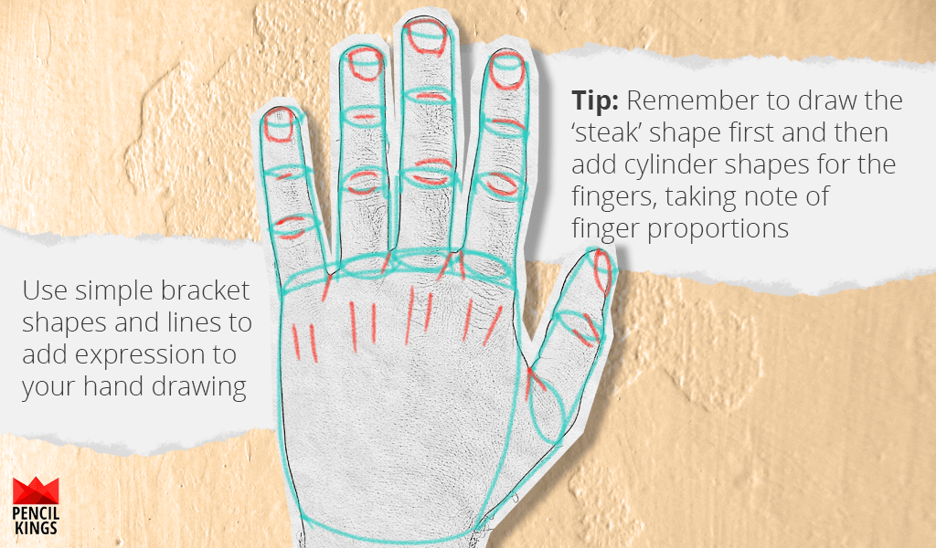 How to Draw Hands Without the Hassle 6 back of hand