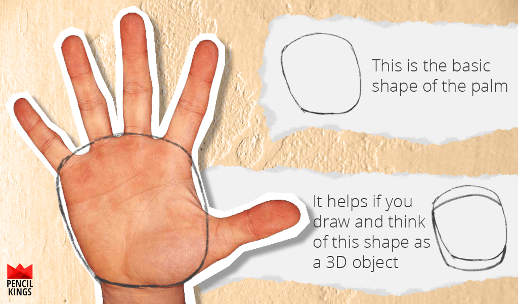 How to Draw Hands Without the Hassle 4 hand palm shape