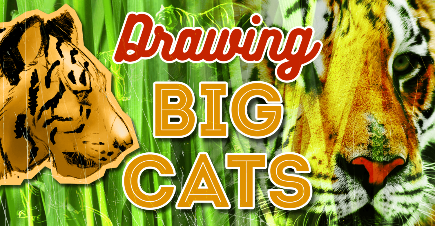 Drawing Big Cats – Everything You Need to Draw Lions and Tigers…oh my!