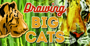 jm_drawing_big_cats_featured_image