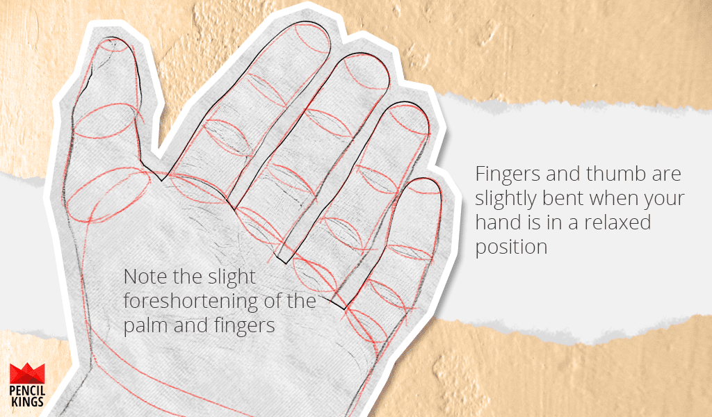 how-to-draw-a-hand-relaxed-hand