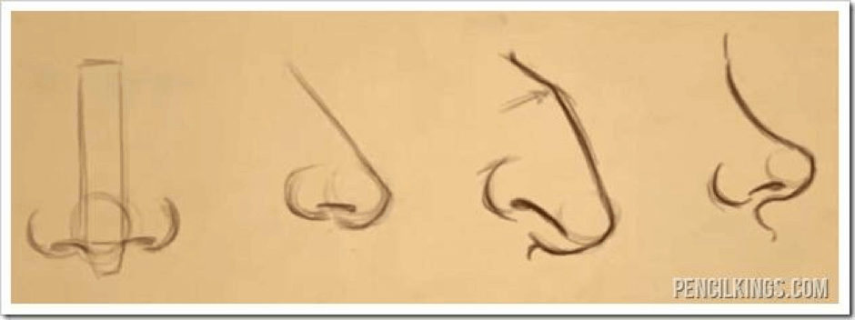 How to Draw Different Types of Noses 64 how t0 draw different noses 07