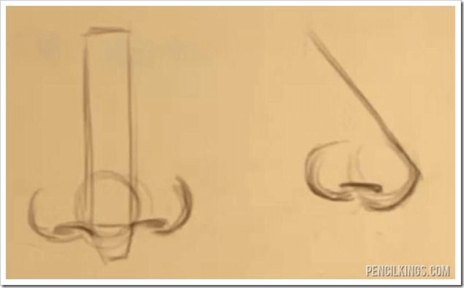 How to Draw Different Types of Noses 6 how t0 draw different noses 05