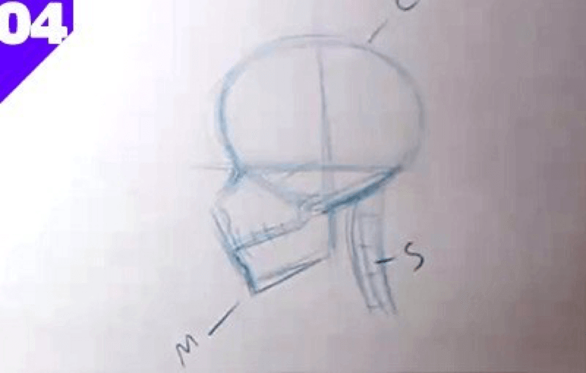 How to Draw the Skull 6 how to draw a skull 04