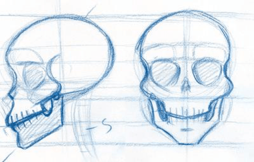 How to Draw the Skull 2 how to draw a skull 08