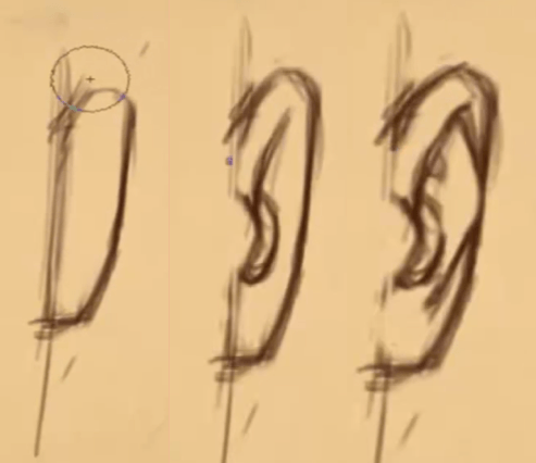 How to Draw Ears 11 how to draw ears 09
