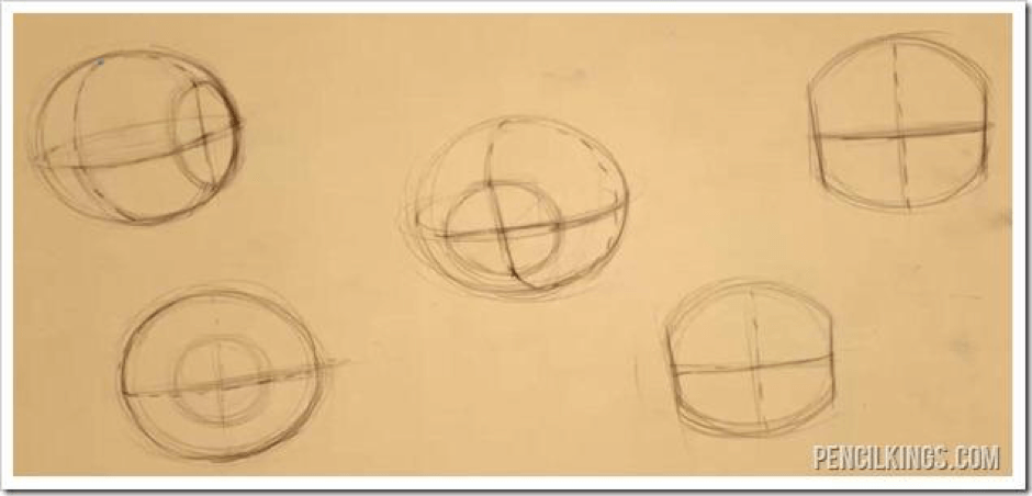 How to Draw The Proportions of the Face 3 how to rotate the head 02