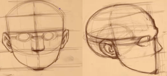 How to Draw The Proportions of the Face 10 how to rotate the head 08