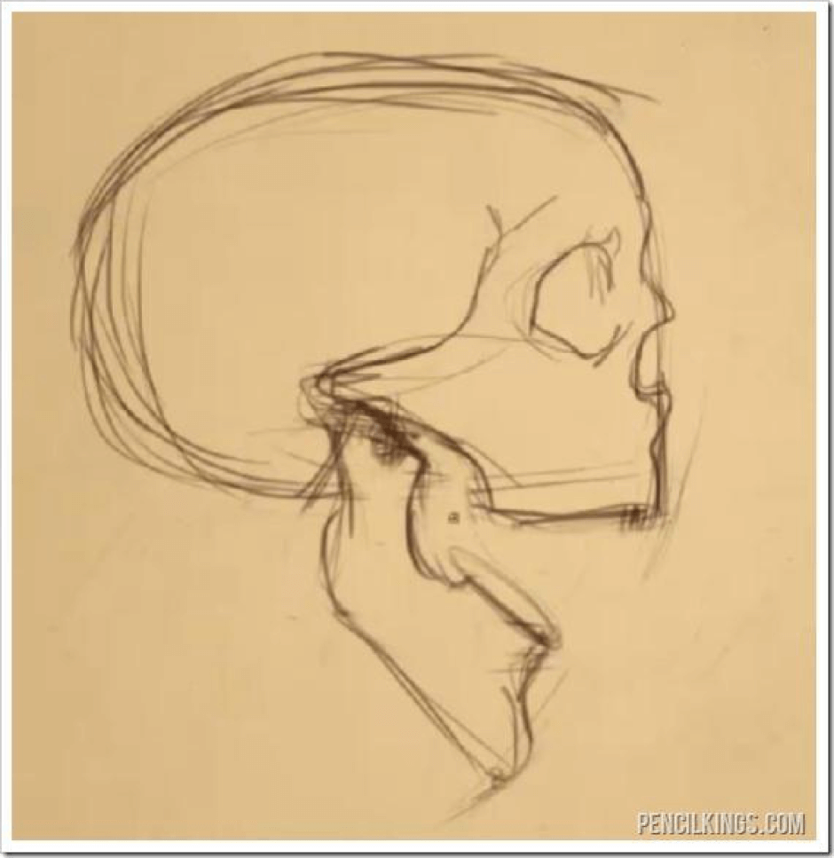 How to Draw the Jaw 4 jaw 2